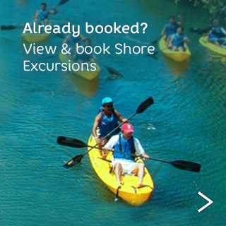 Already booked? View and book shore excursions